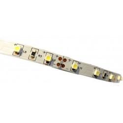 STRISCIA LED 3528-60LED/MT 5mt 12V IP44 NON RESINATO BIANCA